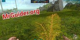 Ark-Survival-Evolved-Mobile.jpg